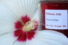 Hibiscus is slightly acidic making this a vibrant red sweet and tangy jelly.  Can be used to ice tea, top toast, pancakes, ice cream added to margaritas, martinis or drinks that calls for simple syrup try this jelly, Glaze grilled chicken or pork. The possibilities are endless. Is high in vitamin C and is a natural diuretic. It is sometimes recommended by Mexican herbalists as a remedy for high blood pressure. Hibiscus flowers also known as roselle or rozelle, sorrel, red sorrel, saril…
