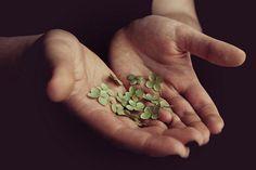 şans duası 2