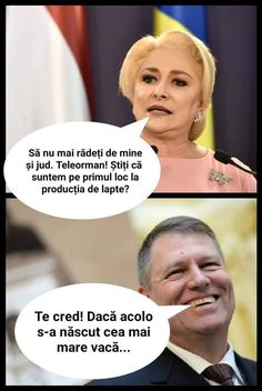 Spune tu cum ar trebui să reacționez la asta Funny Jockes, Funny Texts, Funny Dogs, Funny Images, Funny Pictures, Super Funny, Funny Moments, Cringe, True Quotes
