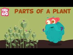 "5 ""parts of the plant"" activities for kids (no. Primary Science, Science Videos, Plant Science, Kindergarten Science, Science Biology, Elementary Science, Science Classroom, Science Lessons, Teaching Science"