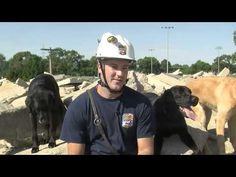 Urban Search and Rescue Dogs