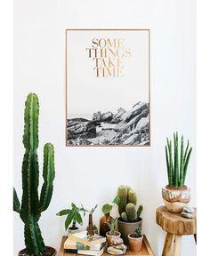 Un salon rempli de cactus pinterest deco inspiration intérieur