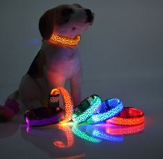 Find More Dog Collars & Leads Information about Led leopard Collar Leash New Safety Dog leash Collar Pet Products Nylon LED Collar Light up Flashing Glow LED Collars LEDCL006,High Quality collar microphone,China collar stay Suppliers, Cheap collar electric from Triangel store on Aliexpress.com