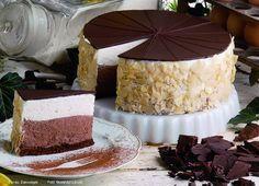 Rigójancsi torta - készítette Czermann János mestercukrász Hungarian Cake, Hungarian Recipes, Torte Cake, Mousse Cake, Chocolate Cake, Sweet Recipes, Cookie Recipes, Food And Drink, Sweets