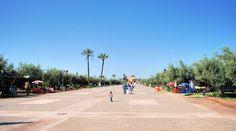 La Ménara est une oliveraie antique, toujours cultivée, irriguée grâce à un bassin rectangulaire, alimenté, depuis plus de 700 ans, par une conduite d'une trentaine de kilomètres, depuis les montagnes. Ce n'est pas, à proprement parler un étang, mais les eaux ne sont pas actuellement limpides. Une estrade métallique gâche ce décor princier qui a servi aux amours des sultans dans le charmant pavillon au toit pyramidal. http://www.jardin-menara.com/