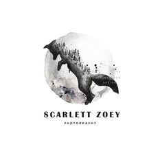 fox logo design moon logo pine logo photography logo artistic