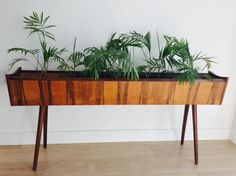 A unique rosewood Indoor planter / plant stand, produced in Denmark in 1970s. Dimensions: Length: 124cm  Height: 57cm  Width: 20cm