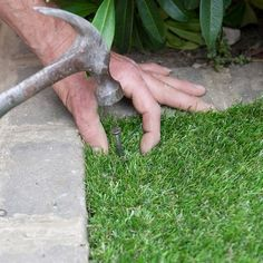 Man Nailing Fake Grass Carpet
