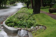City of Spokane - Municipal Government  This rainy weather gives us an opportunity to show how our rain gardens on Lincoln Street work. Instead of running down the hill, the stormwater is captured by the garden, where it filters through the soils in the garden. The soils essentially treat the water. Any water that isn't absorbed within the planter is collected and sent to the pond in Cannon Hill Park.