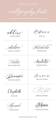 Best (PAID) calligraphy fonts