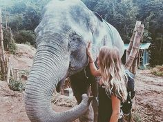 Elephant🐘 uploaded by resa ༄ on We Heart It Adventure Awaits, Adventure Travel, Nature Adventure, Adventure Photos, Good Vibe, Journey, I Want To Travel, Travel Goals, Belle Photo