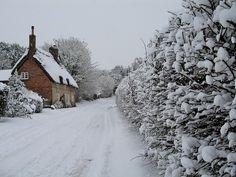 January Snow by The Happy-Snapper on Flickr