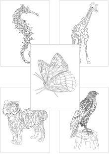mein persönliches blumen-zeichnungsbuch | malbuch ausdrucken | wenn du mal buch, bücher und