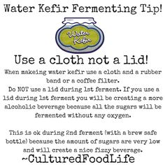 Water Kefir Fermenting Tip! With regular milk (or non dairy milk) kefir you DO use a lid. As well as for cultured vegetables. But with water kefir and kombucha because of the higher sugar content you use a cloth with a rubberband during ferment. Kefir Culture, Water Kefir, High Sugar, Fermented Foods, Kombucha, Gut Health, Healthy Choices, Dairy, Alcohol