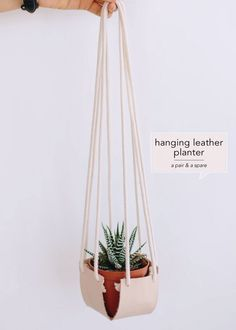 hanging-leather-planter-a-pair-&-a-spare-Design-Crush
