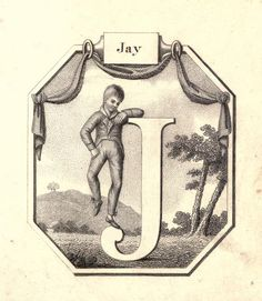 """Jay"" (J) ~ Vintage Children's ABC Flash Card"