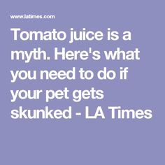 Tomato juice is a myth. Here's what you need to do if your pet gets skunked - LA Times Tomato Juice, Veterinarians, Cleaning Hacks, Your Pet, Times, Pets, Wildlife, Dog, Diy Dog