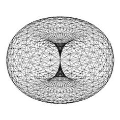 Perhaps the source of Taurus Arrogance - the Human Energy Field's Tube Torus ...