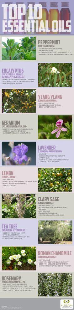 top ten essential oil infographic