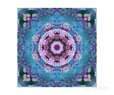 Temple Of Water Mandala XI Photographic Print by Alaya Gadeh at AllPosters.com