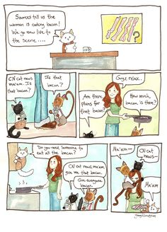 ❤ =^..^= ❤  Breaking Cat News Comic Strip, November 06, 2014 on GoComics.com