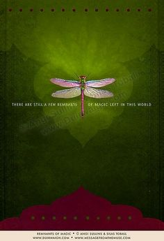 Dragonfly totem: You have the ability to create the world of your dreams. Fill it with the magic you want to see.