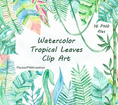 Watercolor Tropical Leaves Clip art by PassionPNGcreation on Etsy