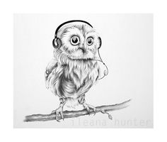 Musical little owl. An illustration perfect for a nursery or childs room. Fine Art Print from an original pencil drawing by Ileana Hunter. Hand signed by the artist. Pencil Drawings, Art Drawings, Children Photography Poses, Fine Art Drawing, Bristol Board, Little Owl, Kids Poster, Sick Kids, Painting For Kids