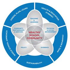 Health Promoting Schools (Healthy School Communities)   PHE Canada Physical Education Curriculum, Health And Physical Education, Ministry Of Education, School Community, Healthy Environment, Social Services, Student Engagement, Learning Environments, Teaching Resources