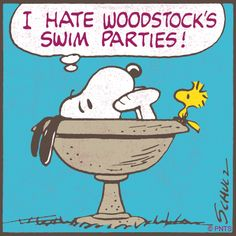 Snoopy and Woodstock go swimming.