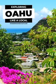 Looking for a dream destination? Travel to Oahu, Hawaii and plan your visit with this local travel guide to Oahu, including all the best insider tips for Oahu! I things to do in Oahu I what to do in Oahu I Hawaii travel I travel tips for Hawaii I places to go in Oahu I where to go in Oahu I where to go in Hawaii I local guide to Hawaii I places to go in Hawaii I Hawaii attractions I Hawaii travel guide I where to stay in Oahu I beaches in Oahu I Oahu beaches I Hawaii beaches I #Hawaii #Oahu