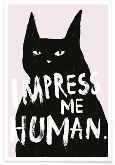 Premium Poster Impress Me Juniqe Größe: 60 cm L x 40 cm B Art Mural, Crazy Cat Lady, Crazy Cats, I Love Cats, Cool Cats, Poster Online, Cat Posters, Cat Quotes, Cat Art