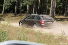 Skoda Octavia Scout in the woods