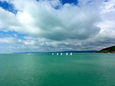 The gorgeous Lake Balaton with sailboats and an incredible colour Old Town, Day Trips, Hungary, Budapest, Sailing, Castle, The Incredibles, Tours, Sailboats