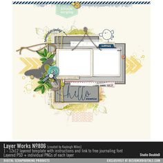 Layer Works No. 806- Studio Double-D Templates- LT711410- DesignerDigitals