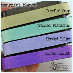 Bundled Sage, Cracked Pistachio, Shaded Lilac, Wilted Violet Beautiful Blend Sweet Violets | www.tammytutterow.com