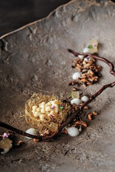 """From Atelier Crenn - Birth - Corn silk nest, pate and duck fat """"eggs"""",puffed wild rice, vanilla pudding, curry-apple pudding, pickled bay mushrooms, chocolate-Porcini branches."""