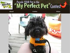Sid -  We were about to get on our boat at Lake Montecello    Share your pet's photo for a chance to win a chance to win one of 7 beautiful photo gifts!  Submit their photo herehttp://www.myperfectpetcontest.com  and for more great ways to showcase your photo memories visit BlanketWorx