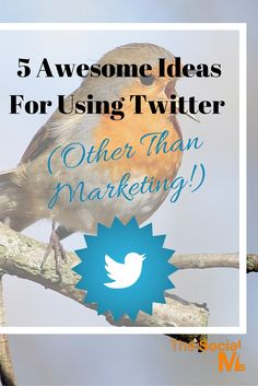 5 Awesome Ideas for Using Twitter - Twitter can be so much more than a marketing channel