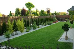 Family garden design in Barnes West London, lawn space as possible for various play activities and an intimate dining area with pleached Quercus Ilex trees Garden Design Layout Modern, Small Garden Design, Landscape Design, Small Backyard Landscaping, Backyard Garden Design, Modern Backyard, Landscaping Ideas, Mulch Landscaping, Diy Garden