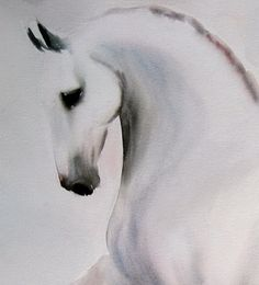 beatrice bulteau art cheval
