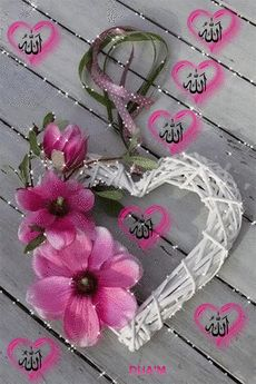 I Love You Pictures, Cute Love Gif, Beautiful Nature Pictures, Beautiful Morning Messages, Good Morning Images Flowers, Muslim Pictures, Islamic Pictures, Flowers Gif, Beautiful Rose Flowers
