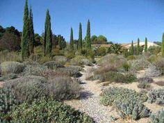 Oliver Fillippi Mediterranean Garden