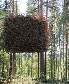 The TreeHotel Sweden: have you ever slept in a Birdnest? - I might go to Sweden just for this.