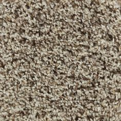 STAINMASTER Active Family Carefree Andover Frieze Indoor Carpet