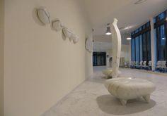 A Massa apre il nuovo ospedale ed entra l'arte contemporanea - Intoscana.it