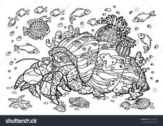 Crab Hermit Sea Coloring Book Pattern