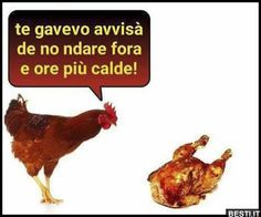 Italian Memes, Married With Children, Good Mood, Really Funny, Funny Texts, Haha, Rooster, Animals, Smile