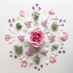 Flowers and Crystals | bubble & brew a modern witch blog