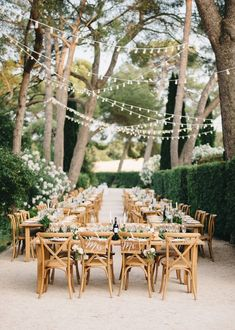 intimate wedding ideas for have an outdoor reception Small Intimate Wedding, Intimate Weddings, Picnic Weddings, Wedding Picnic, Small Weddings, Unique Weddings, Diy Wedding Backdrop, Wedding Decorations, Wedding Dinner